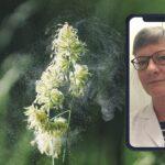 ulla-nystrom-allergolog-och-specialist-inom-alleri-och-astma-pollenallergi